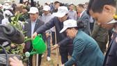 Chủ tịch Quốc hội Nguyễn Thị Kim Ngân tham gia trồng cây