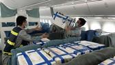Vải thiều được xếp trong khoang ghế ngồi hành khách