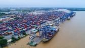 Cảng Cát Lái (TPHCM) ùn ứ container trong khi lực lượng lao động bị thiếu hụt