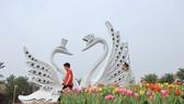 """Dịp Tết thưởng thức """"Bản giao hưởng mùa xuân"""" lung linh tại Ecopark"""