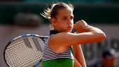 Karolina Pliskova thở phào sau chiến thắng trước Veronica Cepede