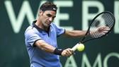 Federer và cuộc chiến với những người Đức