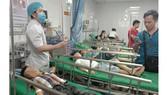 16 học sinh tiểu học ở Nghệ An nhập viện vì bị ong đốt