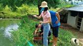 Cán bộ y tế tiến hành điều tra nguồn gây bệnh sốt xuất huyết tại xã Mậu Lâm (huyện Như Thanh). Ảnh: CDC Thanh Hóa
