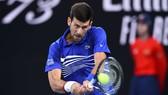 Djokovic vào bán kết lần thứ 7