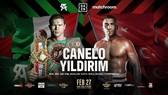 Hình ảnh quảng bá trận Canelo - Yildirim