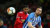 Nhận định Man United - Brighton: Quỷ đỏ bắn hạ chim mồng biển