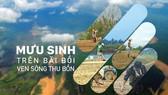 Mưu sinh trên bãi bồi ven sông Thu Bồn