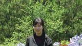 Đi tìm vẻ đẹp mong manh và bất tận của văn học Nhật Bản