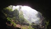 Phát hiện hai hang động mới tại vùng lõi di sản Phong Nha - Kẻ Bàng