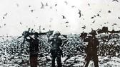 Ngày 25-4-1975: Giải phóng đảo Sơn Ca