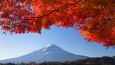 Lãng mạn mùa thu châu Á