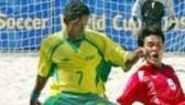 Japan reap Brazilian benefits