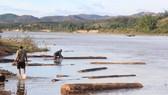 Kon Tum: Liên tiếp phát hiện 3 vụ tàng trữ gỗ lậu
