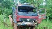 Kon Tum: Khởi tố vụ cưa hạ gỗ dổi cổ thụ