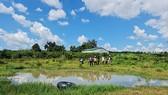 Gia Lai: Đi tắm hồ, 2 cháu bé chết đuối