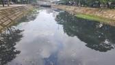 Tình trạng ô nhiễm kéo dài nhiều năm qua tại tuyến kênh Phần Lăng kéo dài từ Sân bay Quốc tế Đà Nẵng đến kênh Phú Lộc (bao gồm cả hồ điều tiết Thanh Lộc Đán, thường gọi Bàu Trảng)