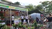 Khai mạc Hội chợ Nông nghiệp Hòa Vang 2020