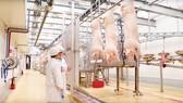 Tổ hợp chế biến thịt MEAT Hà Nam