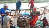 Dự báo xuất khẩu thủy sản năm 2019 giảm 1,2%
