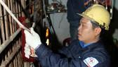 Cải tạo 70 tuyến hẻm để đảm bảo hệ thống điện an toàn, mỹ quan