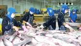 ĐBSCL: Thủy sản, trứng gia cầm tiếp tục sụt giá