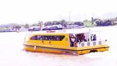 Bình Dương: Khảo sát tuyến xe buýt đường sông đi Củ Chi