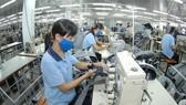 Nhiều doanh nghiệp may cho công nhân làm cách nhật để duy trì hoạt động sản xuất. Ảnh: CAO THĂNG