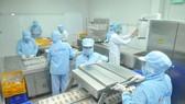 Chế biến trứng cút phá lấu tại Công ty CP Thực phẩm Vĩnh Thành Đạt. Ảnh: CAO THĂNG