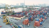 15 hãng tàu biển chấp nhận xử lý container hàng tồn