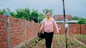Cùng phụ nữ nông thôn Bình Định giải bài toán thoát nghèo từ chăn nuôi