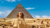 Ai Cập hỗ trợ doanh nghiệp xuất khẩu đợt 2