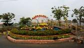 Chợ hoa Xuân Bình Điền 2021
