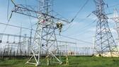 Dự án kéo điện lưới ra Côn Đảo cần hơn 2.500 tỷ đồng