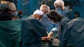 Một ca phẫu thuật ghép tạng tại Tây Ban Nha