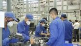 Bình Phước tập trung ổn định kinh tế - xã hội, không làm đứt gãy các chuỗi sản xuất