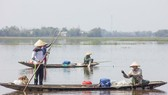 Mưu sinh vùng càng mùa nước nổi