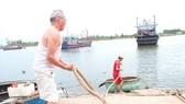 Ngư dân gia cố, neo đậu tàu thuyền để đảm bảo an toàn trong mưa bão