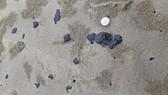 Lượng dầu vón cục trôi dạt vào bờ biển các xã Vĩnh Thái, Kim Thạch và thị trấn Cửa Tùng của huyện Vĩnh Linh