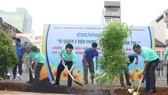 Quận 5 ra quân dọn vệ sinh, trồng cây, tặng cây cho người dân
