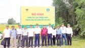 Ứng dụng công nghệ 4.0 trong sản xuất lúa