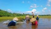 Nông nghiệp thiệt hại nặng do biến đổi khí hậu