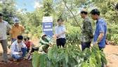 Syngenta cam kết đầu tư 2 tỷ USD vào nông nghiệp bền vững