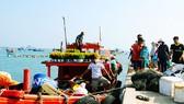 Tết sớm ở đảo biển Nhơn Châu