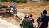 Lũ đánh sập cầu, dân dùng cây cau làm cầu đi tạm