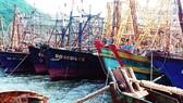 Bao giờ PJICO mới bán được bảo hiểm cho ngư dân?