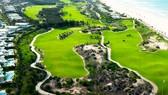 Bí thư Tỉnh ủy Bình Định chỉ đạo: Tạm đình chỉ công tác giám đốc sở chơi golf giữa dịch