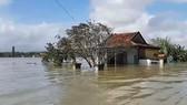 Gần 17.000 ngôi nhà ở Quảng Nam vẫn còn ngập trong nước