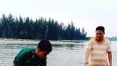 Đồn Biên phòng Cửa Đại đã phối hợp với ngư dân địa phương tiến hành cứu hộ, dìu cá trở lại biển