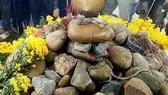 Rắn xuất hiện trên mộ người ăn xin, dòng người mê tín đổ về khấn vái